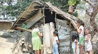 Para el rector de la UNAM, José Narro Robles, es necesario adoptar nuevas políticas de combate a la pobreza ya que es inconcebible que existan millones de pobres en México […]