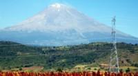 Región de Volcanes La agricultura intensiva es una alternativa atractiva, tanto para incrementar el valor de la producción como los ingresos económicos de los productores, por lo que la Secretaría […]