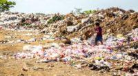 Con el objetivo de concientizar sobre los desechos que se generan antes de consumirlos, se crea el concepto preciclaje, que busca reducir la generación de residuos mediante decisiones de compra […]