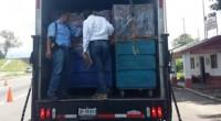 La Procuraduría Federal de Protección al Ambiente (PROFEPA), detectó el manejo irregular de 22.60 toneladas de residuos peligrosos, durante el Sexto Operativo Nacional Carretero 2016, realizado los días 29 y […]