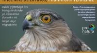 """El Observatorio de Aves Migratorias """"Dr. Mario Ramos"""" dio a conocer que comenzará sus labores de contabilidad y fomento a la conservación de las aves migratorias que atraviesan los cielos […]"""