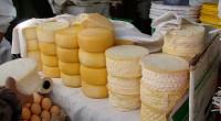 La producción de quesos artesanales es una actividad económica fundamental para gran parte de las familias rurales del estado de Sonora; por tal razón se trabajo en la conservación de […]