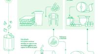 Como parte de sus acciones en materia de sostenibilidad la empresa Tetra Pak buscará incrementar entre 35% y 40% su tasa de reciclaje en México para el año 2020, gracias […]