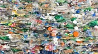 El próximo 8 de abril se llevarán a cabo las votaciones para la elección interna del nuevo presidente de la Asociación Nacional de Industrias del Plástico (ANIPAC) quien estará al […]