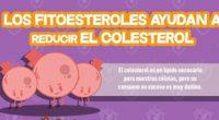 De acuerdo a la Health Coach, Rocío Río de la Loza, el colesterol puede ser combatido por los fitoesteroles, compuestos de origen vegetal cuyo principal efecto es bloquear la absorción […]