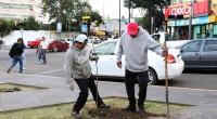 """Irma Eslava El Gobierno del Estado de México puso en marcha el programa de forestación urbana """"Embellece tu Ciudad"""", el cual en su primera etapa tiene contemplado plantar 200 mil […]"""