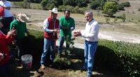 En el municipio Aculco, Edomex, la Escuela Bancaria y Comercial (EBC) realizó su 11ª reforestación anual sumando en estos años la plantación de poco más de 54,000 árboles, mitigando 4,593 […]