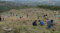 La Escuela Bancaria y Comercial (EBC), realizó su Reforestación 2018 en el municipio de Aculco, en el Estado de México, que cumplió 10 años de esta labor de responsabilidad de […]