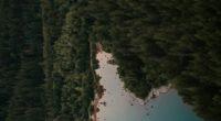 Se dio a conocer que la organización nacional para la conservación más antigua en Estados Unidos, 'Bosques Americanos' (American Forests), celebrará su compromiso con la Alianza Climática de los Estados […]