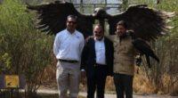 """Con motivo de la celebración del """"Día Nacional del Águila Real"""", fue develada la estatua del """"Guerrero Águila"""", dentro de Reino Animal Parque Temático, precisamente en el área del Refugio […]"""