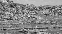 Nezahualcóyotl, Méx.- Es urgente construir un relleno sanitario regional a fin de concentrar la basura de diversos municipios del oriente del Estado de México, pues no existe ninguno en su […]