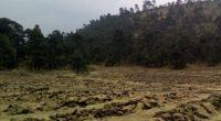 Gustavo López Mendoza, Gerente estatal de la Comisión Nacional Forestal (CONAFOR), en la Ciudad de México, comentó que la restauración de suelos, es de los proyectos más importantes en el […]