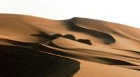 El Sahara es el desierto más grande del mundo y su corazón se encuentra en la región de Fezzan, Libia. Este ecosistema es admirado por sus espectaculares paisajes ya que […]