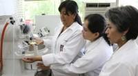 Investigadores del Instituto Politécnico Nacional (IPN) y de la Universidad Nacional Autónoma de México (UNAM) trabajan en la elaboración de un gel que permite acelerar el proceso de cicatrización de […]