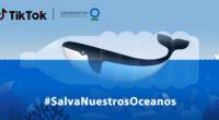 La plataforma de videos cortos TikTok se ha asociado a Conservación Internacional para lanzar el challenge #SalvemosNuestrosOcéanos. Cabe destacar que esta organización trabaja a nivel global para proteger los océanos […]