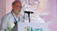 En el marco de la 13ª Conferencia de las Partes de las Naciones Unidas sobre la Biodiversidad (COP13), se presentó laEstrategia Nacional sobre Biodiversidad de México (ENBioMex) y Plan de […]