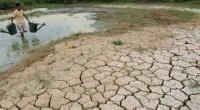 Tras el paso de la 20 Reunión de las Partes (COP20) efectuada en Lima, Perú, la protección ambiental no ocupa un lugar destacado dentro de la agenda pública y, por […]