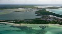 Ante el incremento de los efectos del cambio climático (CC), el paisaje de la llanura costera de Sinaloa sufrirá graves afectaciones como es la alteración de la biodiversidad de […]