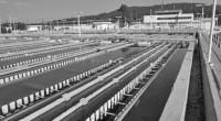 La Comisión Nacional del Agua (Conagua) inició las primeras acciones para la construcción de la tercera línea del Sistema Cutzamala. La construcción del ducto, de 75 kilómetros, tendrá una inversión […]