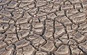 En México, ¿cuánta agua tenemos? Para poder interpretar mejor el tema de la disponibilidad de agua, es importante que recordemos que en México la mayor parte de las lluvias ocurre […]