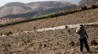 La conservación y mejora de la calidad de los suelos de uso agropecuario y forestal, como factor primordial para aumentar productividad y calidad de más de 200 cultivos comerciales […]