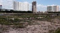 El desmonte de manglares en Tajamar, Quintana Roo, obedece más a la ambición política y económica que a deficiencias del marco legal diseñado para proteger un ecosistema esencial, pues promueve […]