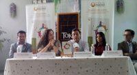 Gustavo Pérez, Director de Responsabilidad Social de Restaurantes Toks mencionó que saliéndose un poco de los apoyos normales que otorga esta empresa, apoya los trabajos de rehabilitación de jóvenes en […]
