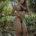 Verónica Almirón, una paraguaya, hermosa, sensual, ojos cristalinos, amistosa, sensible y que gusta mucho de ser hogareña, expresa ser alguien no muy expresiva o demostrativa pero ya en confianza se […]