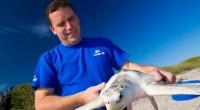 El equipo de rescate de animal de SeaWorld Orlando, Florida regresó a casa a una tortuga Loggerhead en peligro de extinción. Este animal marino mide casi 59 centímetros de largo. […]