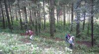 Entre las nueve categorías que incluyó la convocatoria, la que mayor número de inscritos registró fue Restauración forestal en la que se recibieron 37 propuestas, seguida de Manejo y Ordenación […]