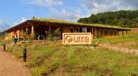 La Universidad del Medio Ambiente (UMA), ubicada en Valle de Bravo, Estado de México, se caracteriza por haber sido construida con tecnologías verdes y contar con un proyecto educativo que […]