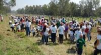 Se llevó a cabo el Día Unilever en donde se contó con presencia de más de 5,700 colaboradores de la empresa Unilever México y sus familias que participaron en esta […]