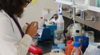 El Centro de Nanociencias y Nanotecnología (Cnyn) de la Universidad Nacional Autónoma de México (UNAM) campus Ensenada, Baja California estudia nanopartículas de plata como una herramienta de diagnóstico para enfermedades […]