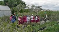 El gobierno mexiquense construye cuatro Centros de Educación Ambiental, que se sumarán a los 40 existentes en todo el mundo y que ubicarán a la entidad a la vanguardia, en […]