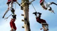 La conservación del palo volador (Zuelania guidonia), árbol emblemático del patrimonio cultural y natural totonaca, permitirá el desarrollo sustentable de la región del Totonacapan, en Veracruz, que tiene como […]