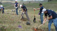 En el marco del Día del Medio Ambiente, se realizó la actividad anual de Voluntarios Modelo que realizaron diversas actividades de conservación de áreas verdes y espacios naturales en diversas […]