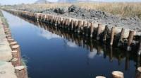 Se dio a conocer que autoridades federales dieron un recorrido por los trabajos finales de rescate de la zona de chinampas de Xochimilco, acción que es uno de los compromisos […]