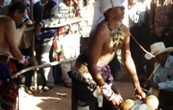 Alrededor de 50 investigadores de México, Estados Unidos y miembros de las comunidades indígenas tohono o'odham, yaqui, cocopah y del Río Gila, participarán en el XI Simposio del Suroeste en […]