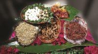 Un Pueblo con Sabor, es una localidad hidalguense, que goza de prestigio en la preparación de alimentos, se destaca por elaborar tradicionalmente uno o más platillos típicos y cuenta con […]